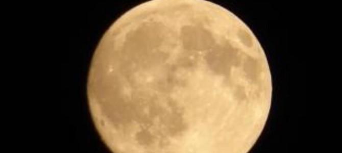 月のリズムと美しくなる心と身体のバイオリズム