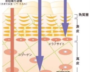 紫外線よりも奥深い筋肉まで届く近赤外線‼︎